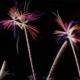 [:ja]大竹・和木川まつり花火大会2019!渋滞回避の駐車場や穴場スポットを徹底紹介[:]